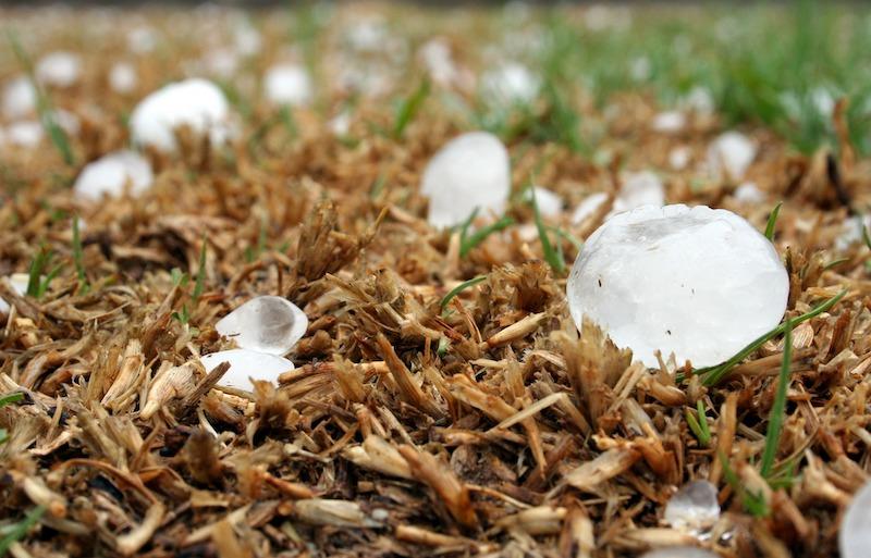 hailstones on ground