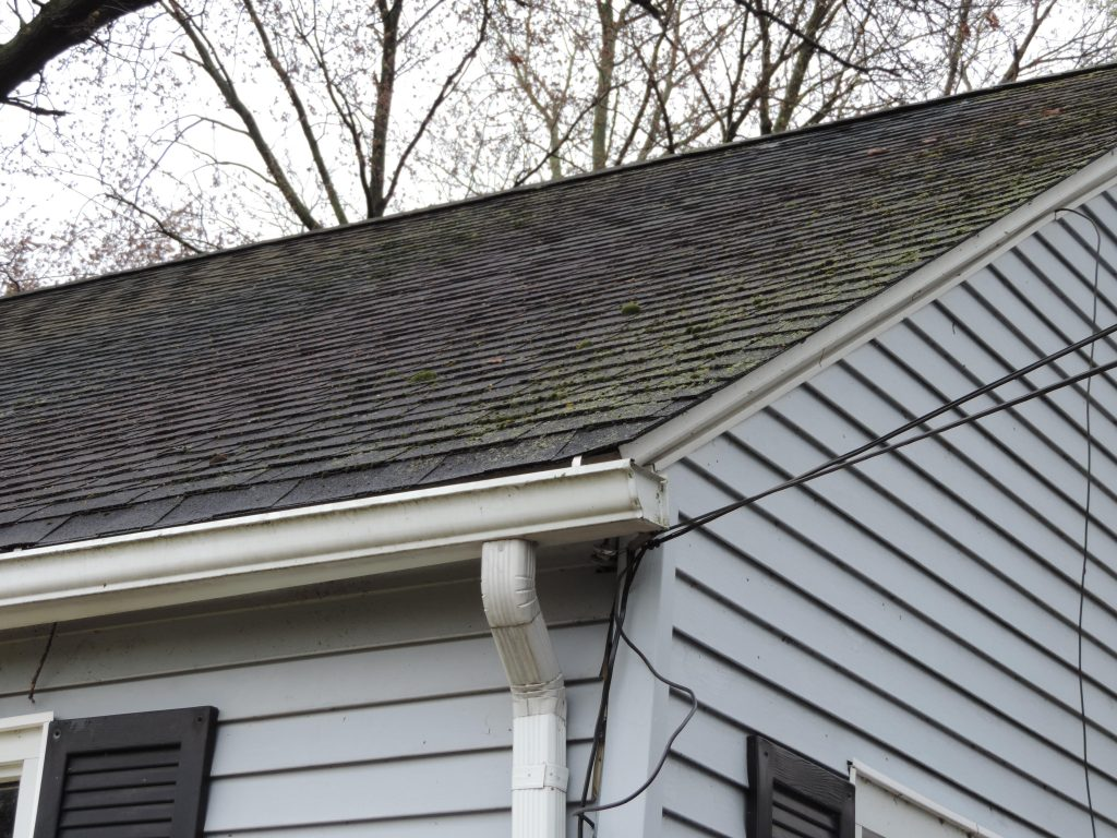 Roof Maintenance Tips and Inspection