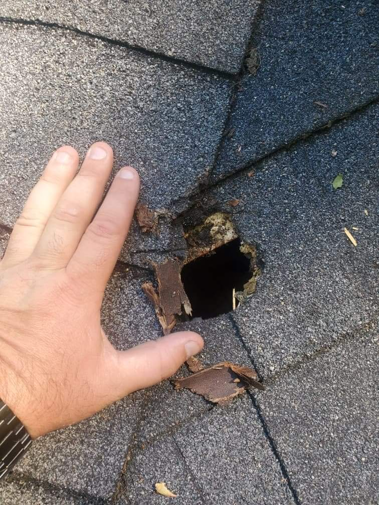 hole in asphalt shingle roof